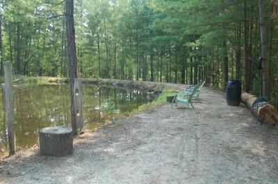 Rv Campground Rv Camping Jordan Lake Moncure Nc